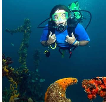 I Bocas del Toro kan Panama du lära dig både spanska och att dyka